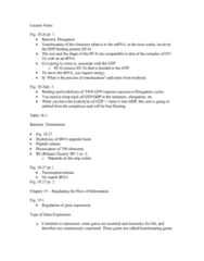 BIOL 2P02 Lecture Notes - Lecture 31: World Federation Of Trade Unions, Transfer Rna, Hydrolysis