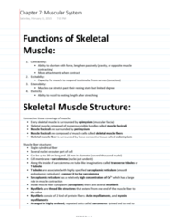 ES 207 Chapter Notes - Chapter 7: Epimysium, Neuromuscular Junction, Membrane Potential
