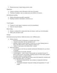 PSYC1003 Lecture Notes - Lecture 18: Sketchpad, Long-Term Memory, Temporal Lobe
