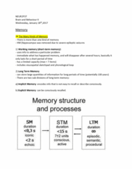 NEUR 2P37 Lecture Notes - Lecture 2: Long-Term Memory, Caudate Nucleus, Implicit Memory