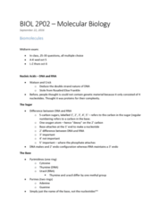 BIOL 2P02 Lecture Notes - Lecture 4: Nucleoside, Uracil, Methyl Group
