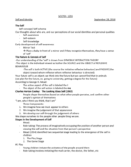 SOCPSY 1Z03 Lecture Notes - Lecture 7: Impression Management, Erving Goffman, Mirror Test