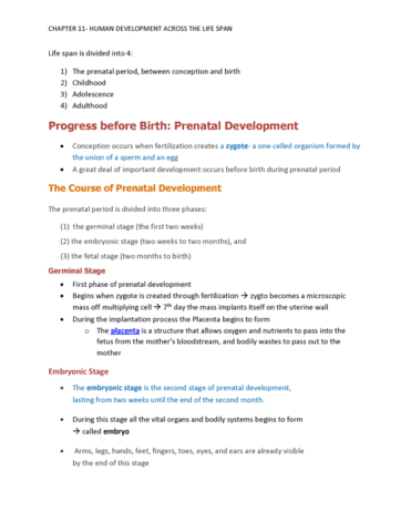 the course of prenatal development