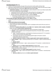 BLG 700 Lecture Notes - Lecture 12: Extensor Carpi Ulnaris Muscle, Flexor Carpi Radialis Muscle, Flexor Carpi Ulnaris Muscle