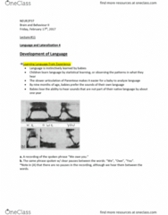 NEUR 2P37 Lecture Notes - Lecture 11: Frequency, Child Development Stages, Phoneme