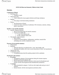 KNES 260 Study Guide - Midterm Guide: Cell Signaling, Asthma, Vasodilation