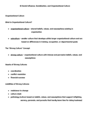 COMM 222 Chapter Notes - Chapter 8: Social Influence, Organizational Culture