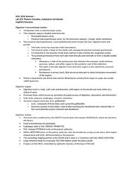 BIOL 2030 Study Guide - Quiz Guide: Peristalsis, Oviduct, Chordate