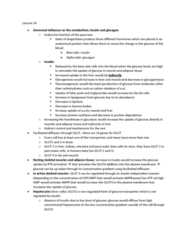 BIOL 3070 Lecture Notes - Lecture 24: Anabolism, Glycogen, Glut4