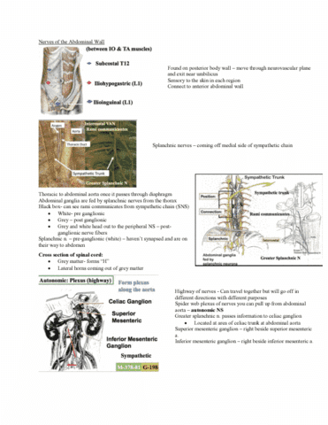 Class Notes for Anatomy and Cell Biology 2221 at Western University ...