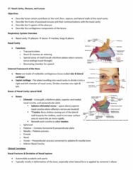 Anatomy and Cell Biology 3319 Lecture Notes - Lecture 37: Vestibular Fold, Record Producer, Phonation