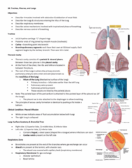 Anatomy and Cell Biology 3319 Lecture Notes - Lecture 38: Respiratory Center, Pneumothorax, Rib Cage