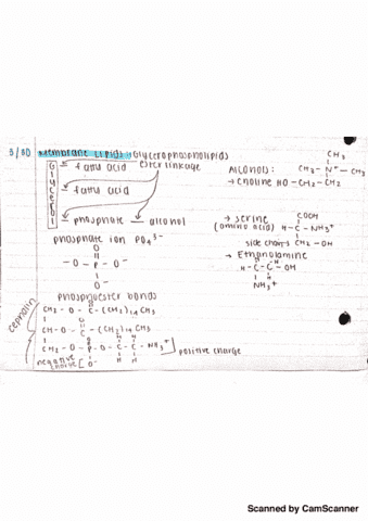 chem-221-lecture-3-chapter-19-lecture-3-notes