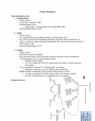 NUTR 3210 Lecture Notes - Lecture 10: Proteinogenic Amino Acid, Pyrrolysine, Selenocysteine