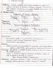 BUS 100 Lecture 13: Marketing Notes