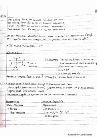bio-203-lecture-13-new-doc-2017-05-17-12-
