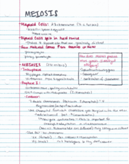 BIOL 204H Lecture 17: Meiosis