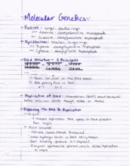 BIOL 204H Lecture 18: Molecular Genetics