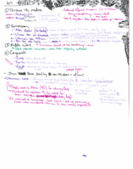 MES 301K Lecture Notes - Lecture 2: Ridda Wars