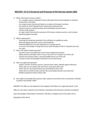 SOC 808 Study Guide - Midterm Guide: Reflex Arc, Patellar Reflex, Semipermeable Membrane
