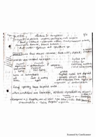 pl-path-300-lecture-3-plant-pathology-lecture-3