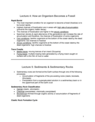 GLGY 307 Lecture Notes - Lecture 4: Ooid, Lithification, Mudflat