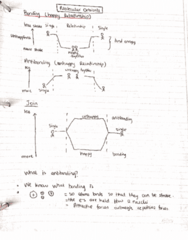 CHEM 2OA3 Lecture 2: Molecular Orbitals Explained