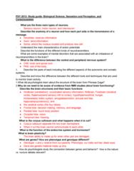 CHM-1045 Study Guide - Midterm Guide: Corpus Callosum, Phineas Gage, Occipital Lobe