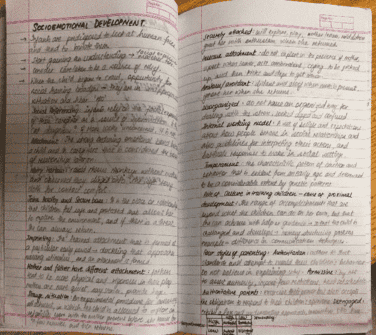 psych-ua-1-chapter-development-socioemotional-development-and-cognitive-development