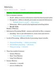 PSYCH 111 Lecture Notes - Lecture 11: Retrograde Amnesia, Memory Span, Artichoke