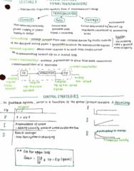 PROCTECH 2IC3 Lecture 5: Process Control