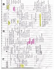 ASTR 2 Lecture 14: Timeline