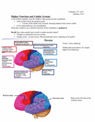 Anatomy and Cell Biology 3319 Lecture Notes - Lecture 11: Ideomotor Apraxia, Primary Motor Cortex, Postcentral Gyrus