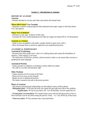 Health Sciences 2300A/B Lecture Notes - Lecture 1: Supine Position, Spinal Cord, Cranial Cavity