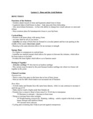 Health Sciences 2300A/B Lecture Notes - Lecture 3: Ethmoid Bone, Mastoid Part Of The Temporal Bone, Epiphysis