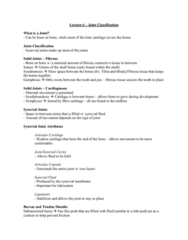 Health Sciences 2300A/B Lecture Notes - Lecture 6: Posterior Longitudinal Ligament, Spinal Disc Herniation, Temporal Bone