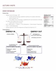 NUTR 3210 Lecture Notes - Lecture 4: Calorimeter, Antoine Lavoisier, Max Rubner