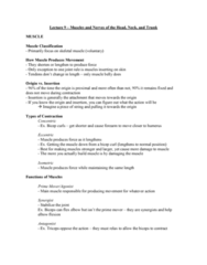 Health Sciences 2300A/B Lecture Notes - Lecture 9: Corrugator Supercilii Muscle, Orbicularis Oculi Muscle, Occipitofrontalis Muscle