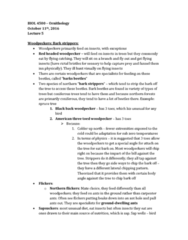 BIOL 4500 Lecture Notes - Lecture 5: Ninox, Niche Differentiation, Peripheral Vision