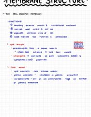 BIOL 1116 Lecture Notes - Lecture 7: Muumuu, Lipid Bilayer, Membrane Protein