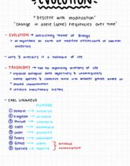 BIOL 1116 Lecture Notes - Lecture 4: Carl Linnaeus, Mammal, Chordate