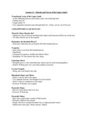 Health Sciences 2300A/B Lecture Notes - Lecture 11: Ulna, Coracoid Process, Median Nerve