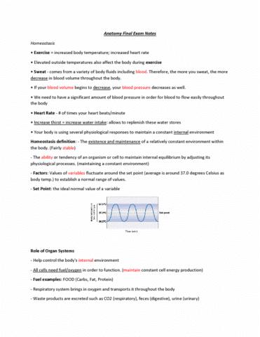kinesiol-1a03-final-anatomy-final-exam-notes
