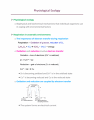 ZOL 355 Lecture Notes - Lecture 13: Electron Acceptor, Oxaloacetic Acid, Methanogenesis
