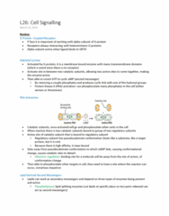 BIOL 2020 Lecture Notes - Lecture 26: Phospholipase C, Phospholipid, Phosphatidylinositol