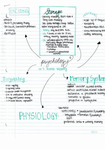 psyc-1013-lecture-7-human-memory