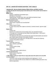 BPK 142 Study Guide - Final Guide: Flexor Carpi Radialis Muscle, Flexor Carpi Ulnaris Muscle, Flexor Digitorum Profundus Muscle