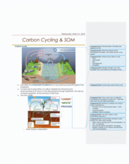 AGR 2050 Lecture Notes - Lecture 24: Soil Health, Soil Respiration, Carbon Cycle