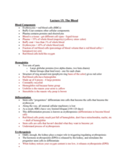 PHIS 206 Lecture Notes - Lecture 15: Buffy Coat, Erythropoiesis, Urobilin