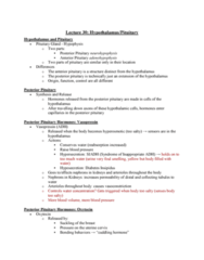 PHIS 206 Lecture Notes - Lecture 30: Posterior Pituitary, Anterior Pituitary, Syndrome Of Inappropriate Antidiuretic Hormone Secretion
